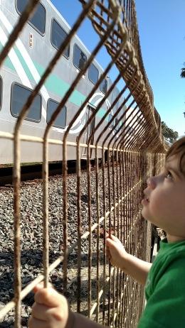 El tren mama