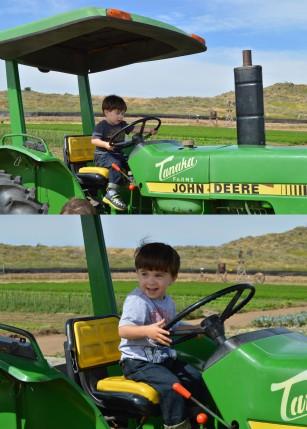 niños en tractor